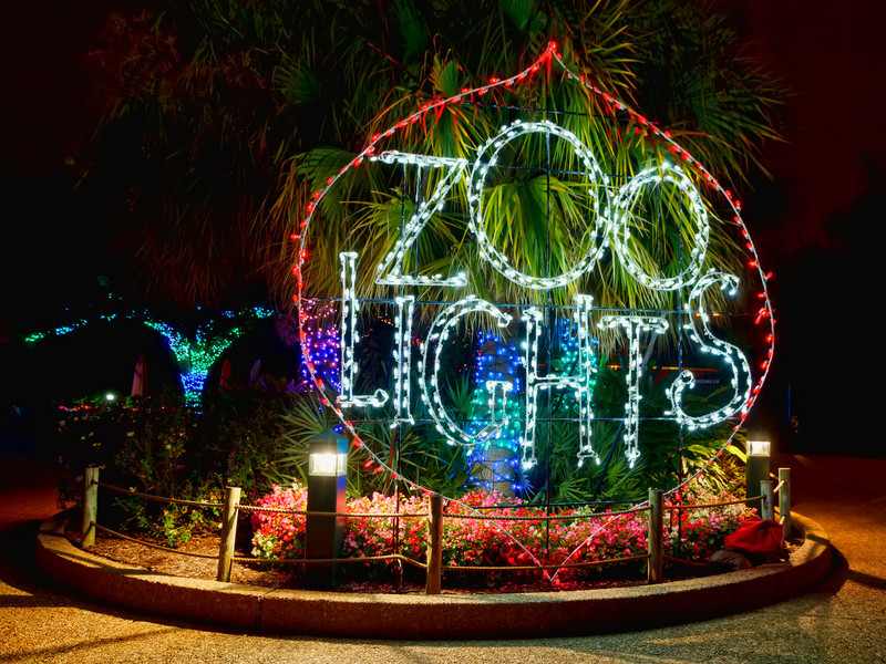 The Houston Zoo lights up the place with over a million lights during the Christmas season for visitors to enjoy during Zoo Lights. Photo by Tim Stanley Photography.