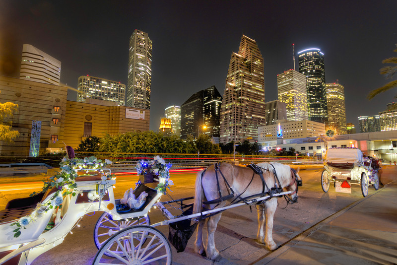 After dinner, you don't head back to the car. No. You head for the horse. You take her for a romantic carriage ride amid the night lights and the jealous onlookers. Now she knows she's special and you just made a night to remember. Photo by Tim Stanley Photography.